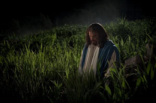 Jesus in prayer with God in Garden of Gethsemane